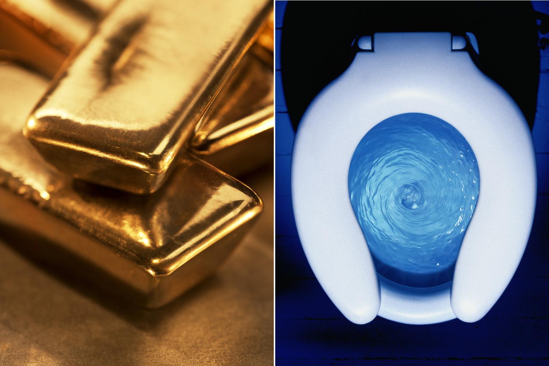 Gold Poop Image